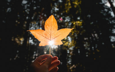 Eure Herbsthochzeit